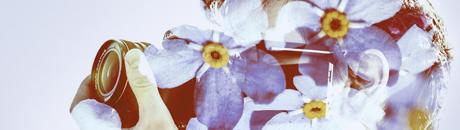 cameraflower.jpg